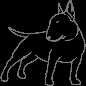 Bullterrier cn_single_1c_4light