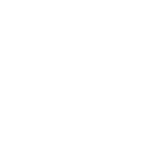 Isländer Islandpferd Icelandic Horse Pony Isi