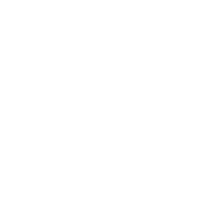 The Walking Twins