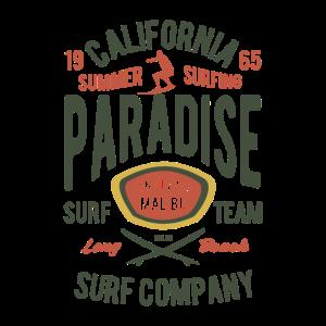 California Summer Surfing Paradise