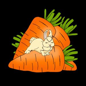 Witziger Hase mit riesigen Karotten Geschenkidee