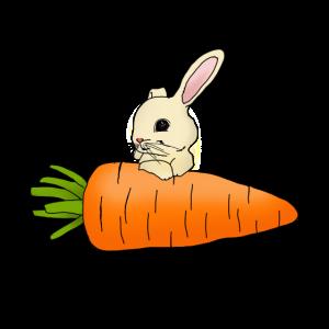 niedlicher Hase mit riesiger Karotte Geschenkidee