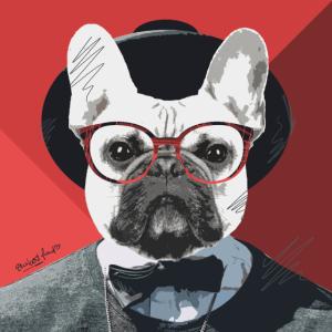 Französische Bulldogge Portrait