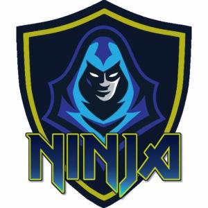 Team Ninja