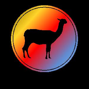 Kamel Alpaka Llama