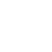 Woman Without Man Fish Without Bicycle