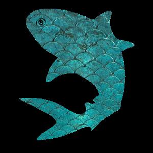 Shark // Schuppen, Fisch, Hai, Ocean, Meer, Kiemen