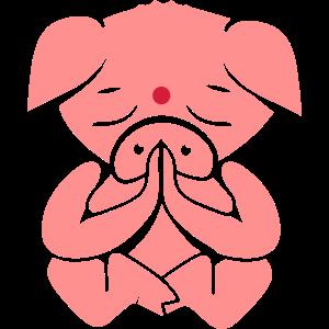 Schwein beim meditieren