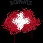 Schwiiz Text Landkarte Flagge Graffiti