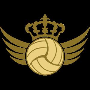 Volleyball Blazon Design