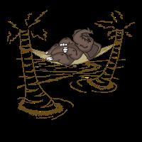 Elefant in Hängematte