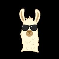Lama Llama Alpaka Sonnenbrille Swag Geschenk
