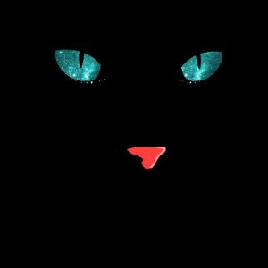Katze Katzenauge Katzengesicht Katzen Geschenk