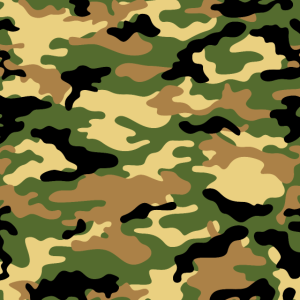Camouflage (Green)
