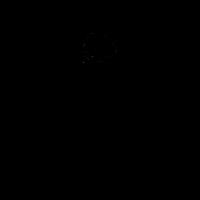 Totenkopf mit Pistolen in schwarz