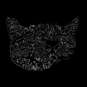 Glückliche Katze Schmusen Katzengesicht 2