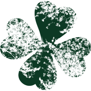 Grunge Kleeblatt St Patricks Day Shamrock Natur