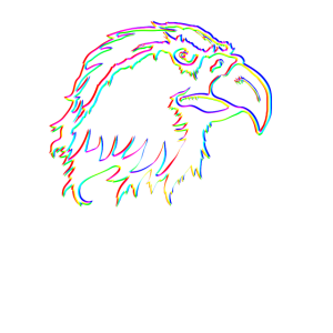 Adler Glitch Effect T Shirt