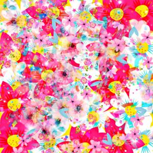 Blumenwiese Blüten Sommer