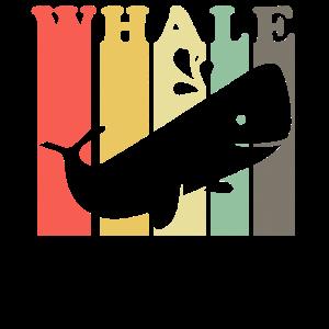 Wale 5 farbig quadrat - Geschenk