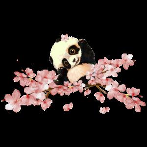 niedlicher Panda