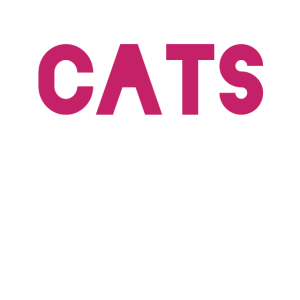 Cats Katze Chat