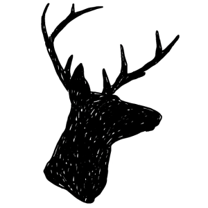 Hirsch schwarz