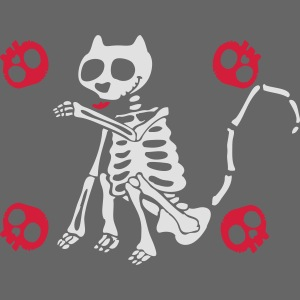 Katzen Skelett