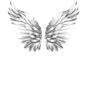 Engelflügel Engelsflügel Engel Flügel Weiß Weiss