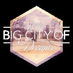 Poitiers, big city of dreams - Tram