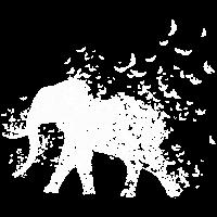 Elefant Save the elephants Tierschutz Aussterben