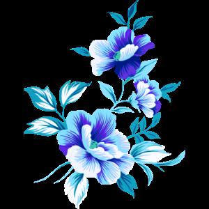 Schöne blaue Blumen Blume blau Sommer sommerlich