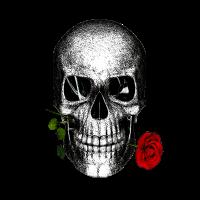 Schädel mit Rose