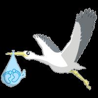 Baby Shower Junge Storch Baby Füße Geschenk
