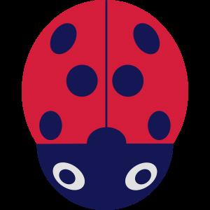 Marienkäfer Frühling Insekt