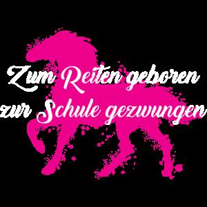 Pferde: Zum Reiten geboren - zur Schule gezwungen.