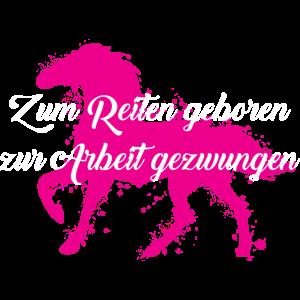 Pferde: Zum Reiten geboren - zur Arbeit gezwungen.