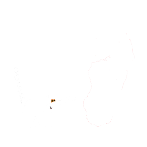 Reif für die Insel Madagaskar,Madagascar Shirt Fun