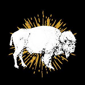 Büffel Tierschutz