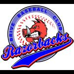 razorbacks logo