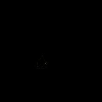 Camper schwarz