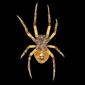 Polygon Spinne Zeichnung Horror
