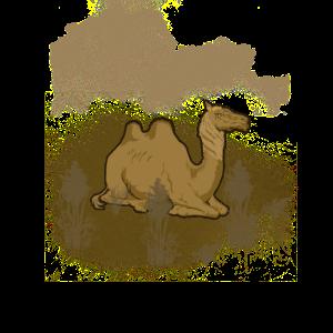 Kamel Wüste Tier Trampeltier Ägypten Geschenk