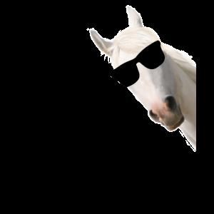 Pferd Sonnenbrille weiss