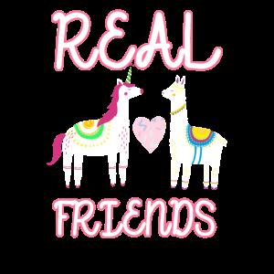 Real friends Einhorn und Lama