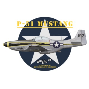 P-51 Little Joe