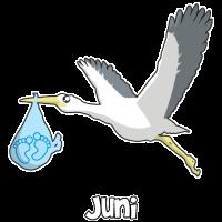 Baby Shower Junge Storch Baby Füße Juni