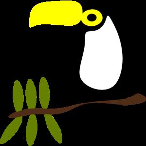 Kakadu Vogel Geschenk Tiere VOEGEL TIERE BILD