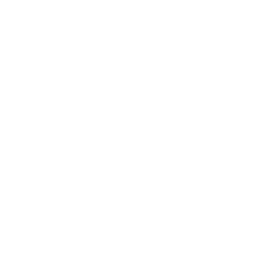 Polygon Art Geometrischer Wolf Hund Jagd Geschenk