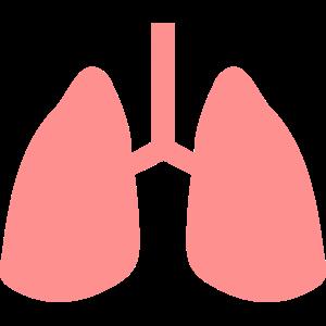 Lunge Naturschutz Umweltschutz Arzt Geschenk